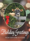 Holiday Greetings Cow